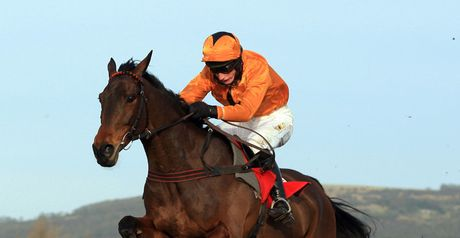 Maljimar - back to Aintree fences