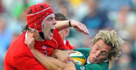 Wyn Jones: Wants Wales to show their true colours in November