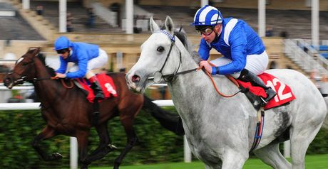 Tamaathul impresses at Doncaster.