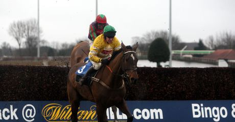 Mad Max - Arkle aim at Cheltenham.