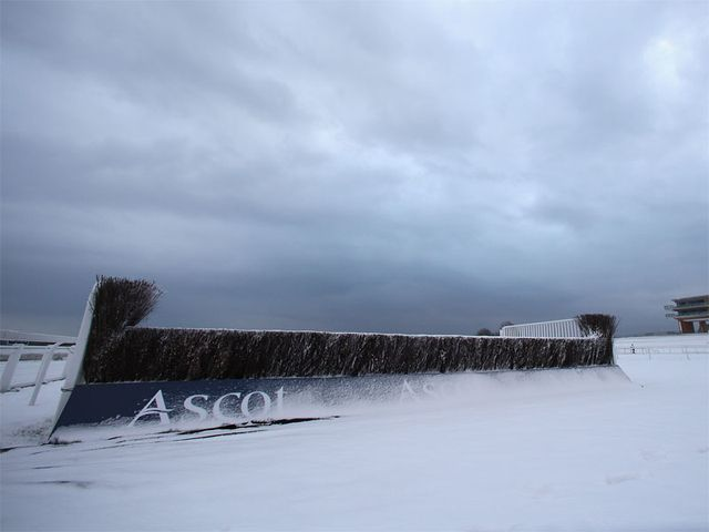 Ascot: Snow-bound