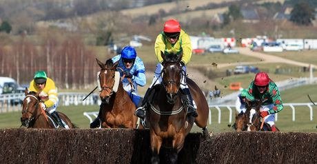 Sizing Europe puts in a mighty leap in the Arkle.