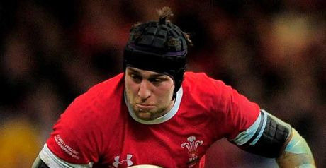 Jones: autumn internationals a chance for hopefuls