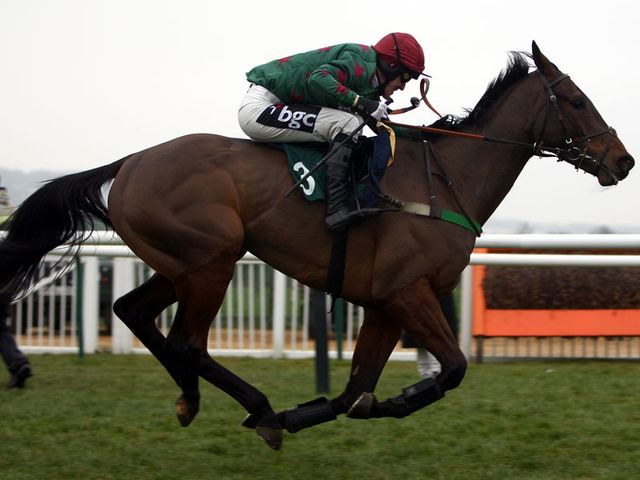 Calgary Bay: Heads the weights for the Sky Bet Chase