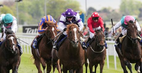Prime Defender wins at York.
