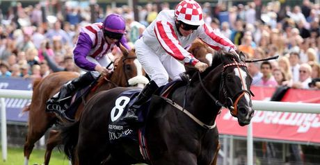 Shock Nunthorpe winner Sole Power is ready for the Al Quoz Sprint.