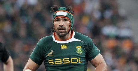 Matfield: Captaincy role