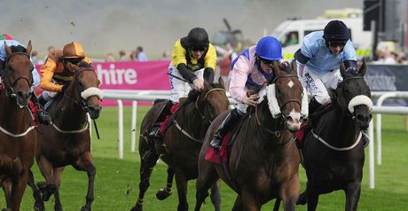Prohibit: Set for Haydock outing