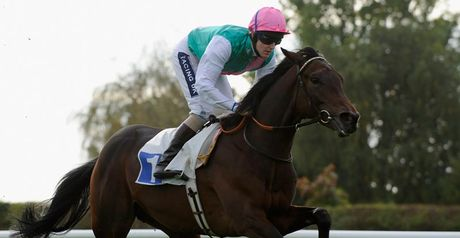 Picture Editor: a better bet than Frankel?