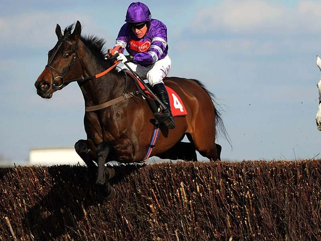 Big Fella Thanks: Becher Chase hopeful