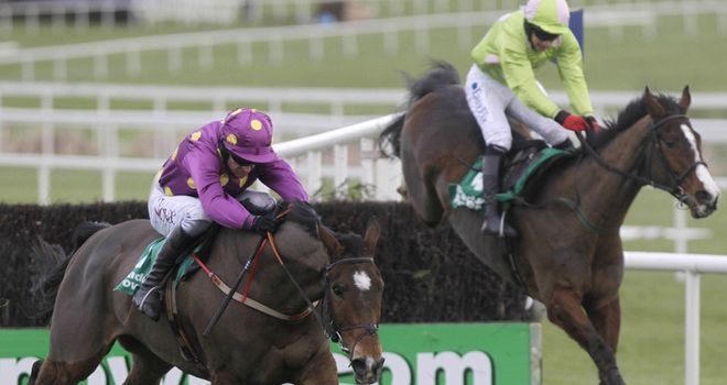 Big Zeb: Unlikely to run at Cheltenham again