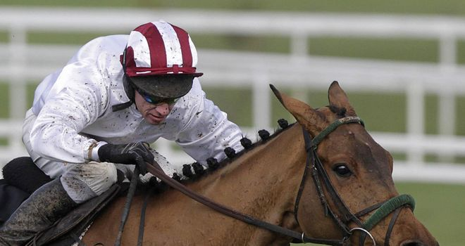 Pandorama: Impressive winner of the Lexus Chase