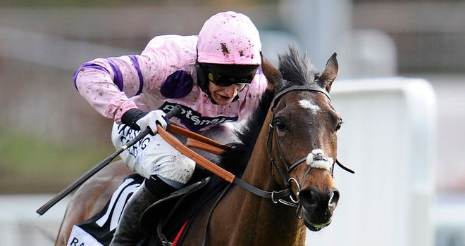 Zarkandar: Being lined up for the Champion Hurdle