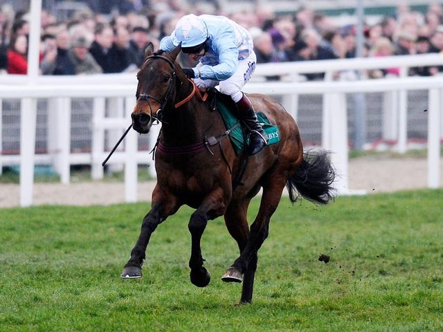 Cheltenian winning last year's Champion Bumper