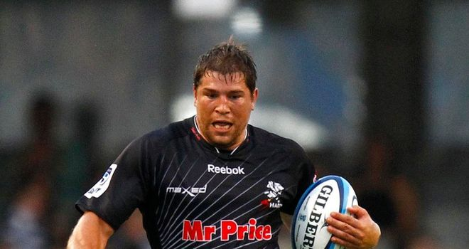 Willem Alberts: Has been declared fit to face the Stormers