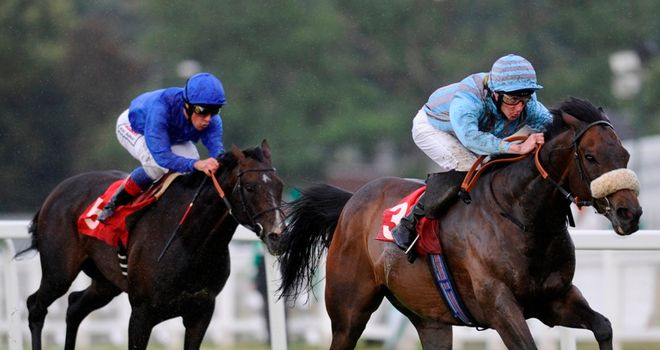 Blue Bajan: Yorkshire Cup aim