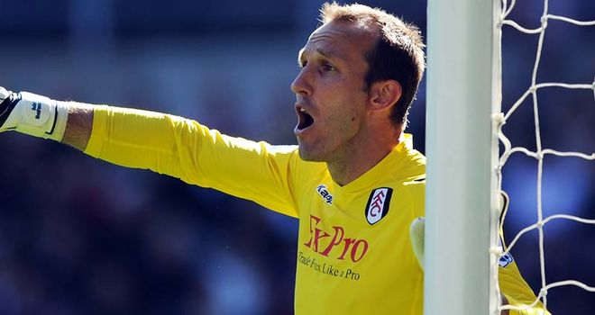 Mark Schwarzer: Hoping to feature for Australia at the 2014 World Cup