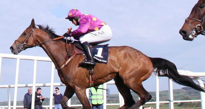 Big Zeb: Tried and tested route going to the Cheltenham Festival