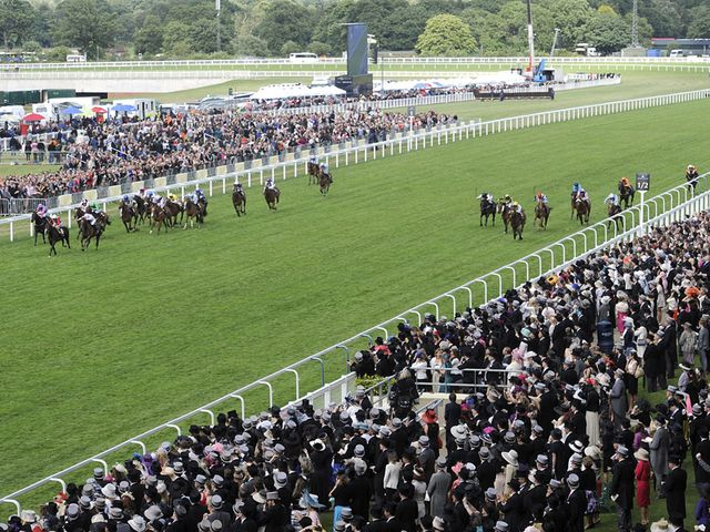 Ascot: Soft ground and more rain forecast on Wednesday night