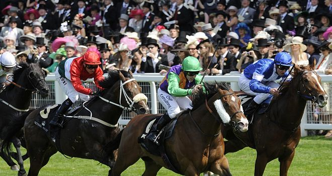 Prohibit: On target for Nunthorpe at York