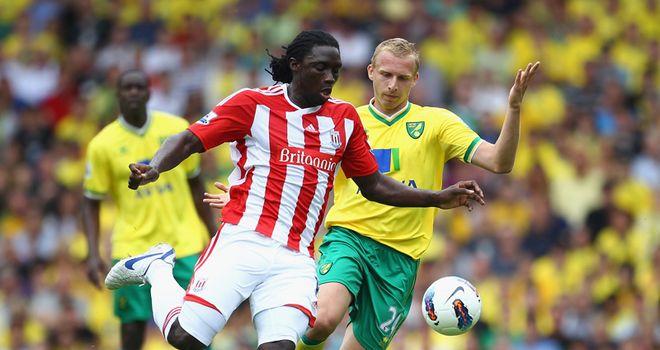 Kenwyne Jones: Has slipped down the pecking order at the Britannia Stadium