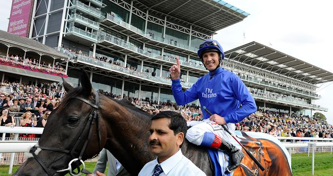 Blue Bunting: Set for Meydan assignment