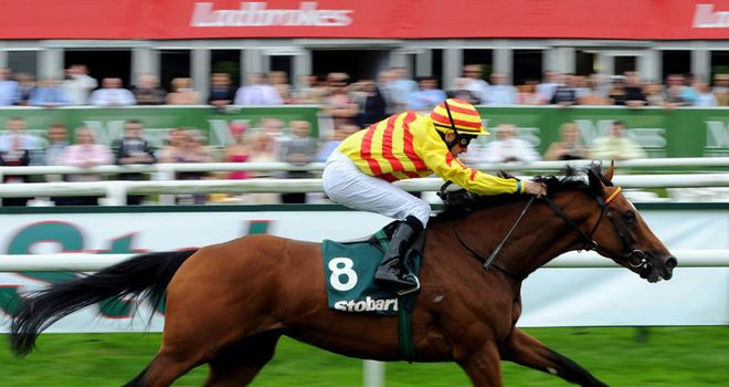 Saddler's Rock: Won the Doncaster Cup