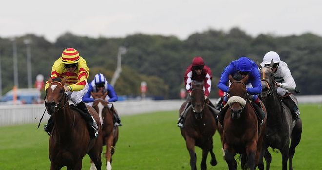 Saddler's Rock: Made a fine return to action