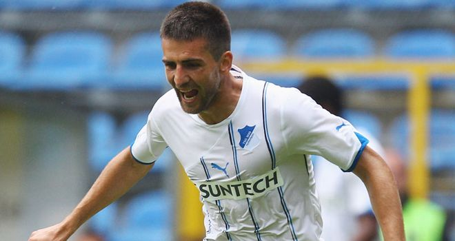 Vedad Ibisevic: The Bosnian striker has scored five goals for Hoffenheim this season