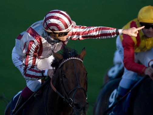 Cirrus Des Aigles: Longchamp then Ascot his autumn plan