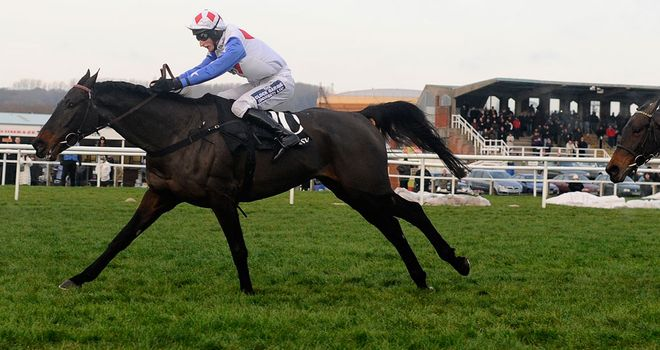 Diamond Harry: Returns at Wincanton in the Badger Ales Trophy this weekend