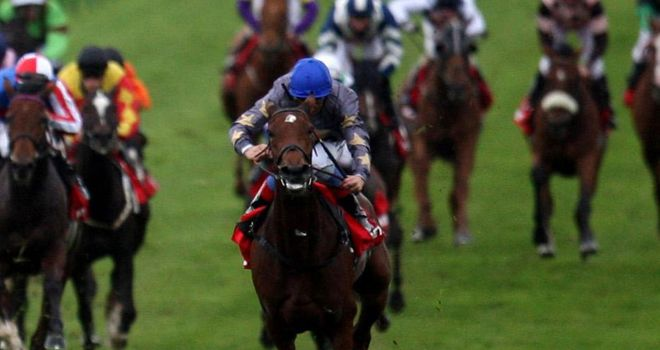 Never Can Tell: Set to miss Royal Ascot
