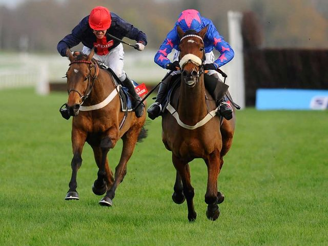 Bobs Worth (L): In action at the track last season