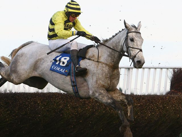 Silver By Nature: Declared to run at Haydock