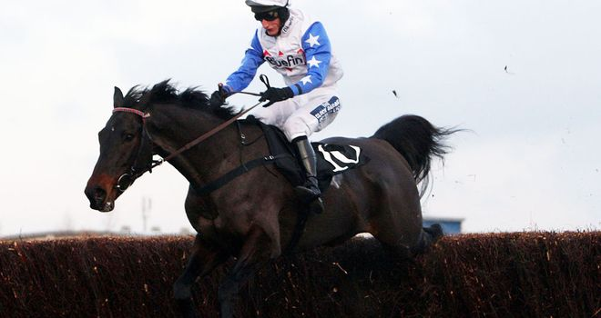 Diamond Harry: May revert to hurdling