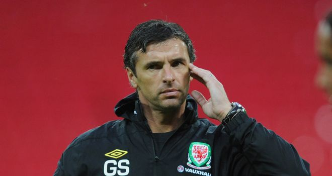 Gary Speed: Manager's dream to reach 2014 World Cup can be realised, according to Raymond Verheijen