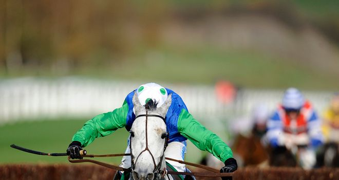 Great Endeavour: Paddy Power winner
