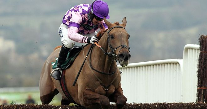 Time For Rupert: Could take in the Hennessy Gold Cup