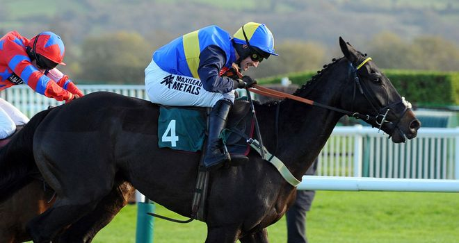 Wayward Prince is on course for the Argento Chase