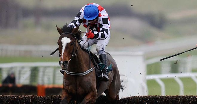 The Giant Bolster: Ran well at Newbury