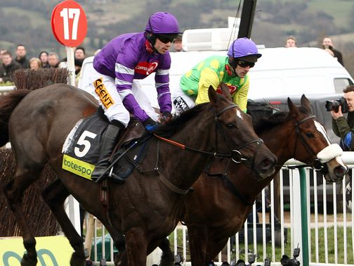 Denman and Kauto Star: How did you do in the early rounds?