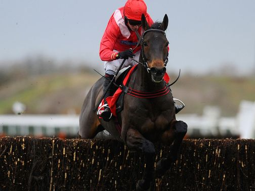 Gauvain: Won the 2011 Peterborough Chase