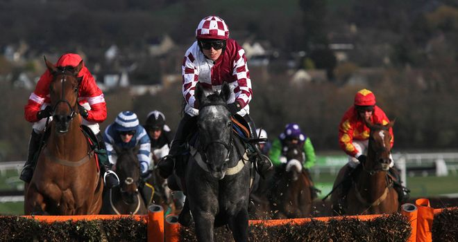 Baby Mix wins at Cheltenham