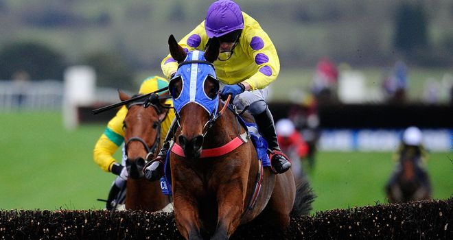 Le Beau Bai: Trainer paid tribute to his Welsh National hero