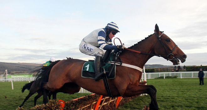 Oscar Whisky: Cheltenham winner