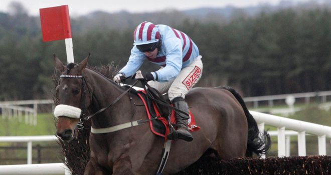 Rubi Light: An impressive winner at Punchestown