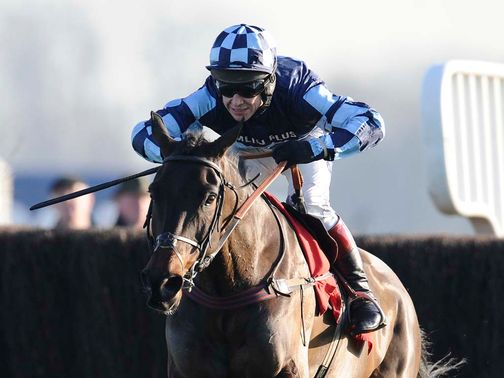 Menorah: Could return in the Haldon Gold Cup