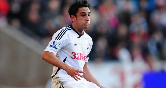 Neil Taylor: Insists Swansea are focused solely on securing survival