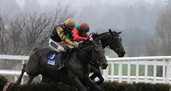 Boston Bob: Reportedly to be aimed at the Ladbrokes World Hurdle