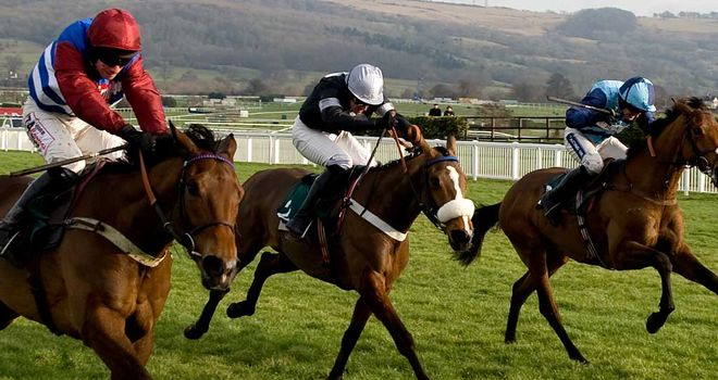 Pearl Swan (right): Set to reappear in the Betfair Hurdle